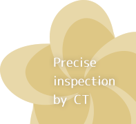 Precision inspection by CT